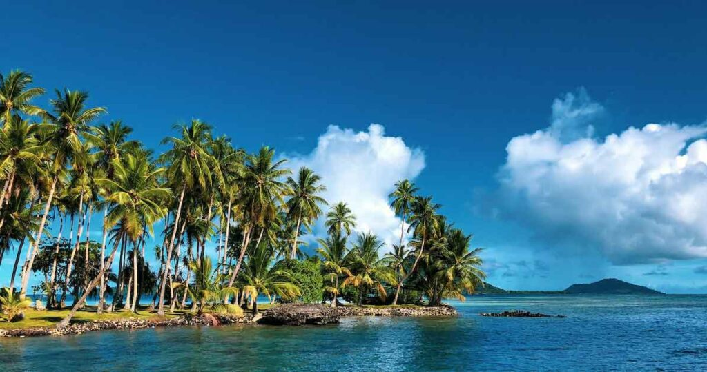 Coconut trees on Chuuk Lagoon, Weno, Federated States of Micronesia, where Yapese is spoken.