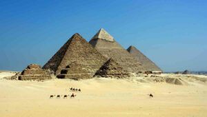 Several camels roaming in front of Egyptian pyramids. Ancient Egyptian interpreters were regarded as public servants.